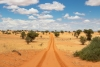 Botswana: Kgalagadi in Spotlight for Tourism Development